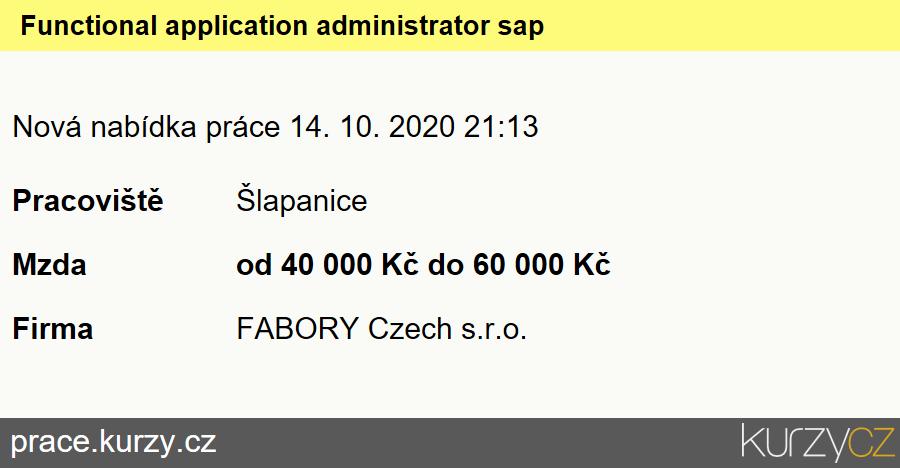 Functional application administrator sap, Specialisté voblasti testování softwaru a příbuzní pracovníci